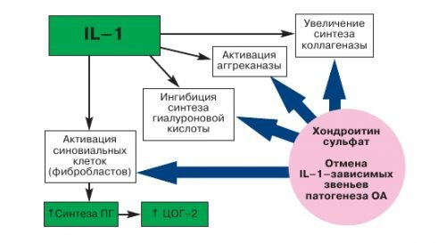 ХОНДРОКСИД - инструкция по применению, цена, отзывы и аналоги