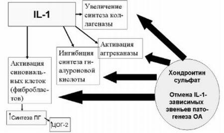 АРТРИН - инструкция по применению, цена, отзывы и аналоги
