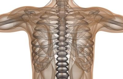 Деформация грудной клетки у ребенка и взрослых - как исправить?