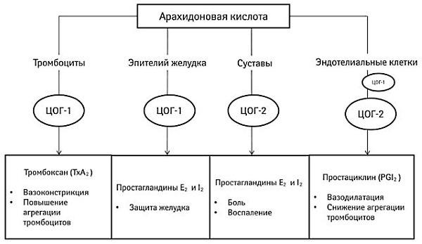 АПОНИЛ - инструкция по применению, цена, отзывы и аналоги