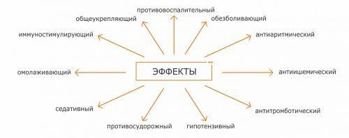 КРЕМ СОФЬЯ - инструкция по применению, цена, отзывы и аналоги