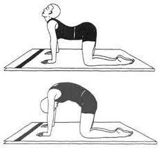 Упражнения для осанки в домашних условиях - техника выполнения