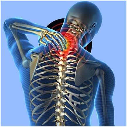 Пиявки при остеохондрозе шейного отдела - лечение