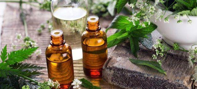 Травы при остеохондрозе позвоночника - лучшие народные рецепты