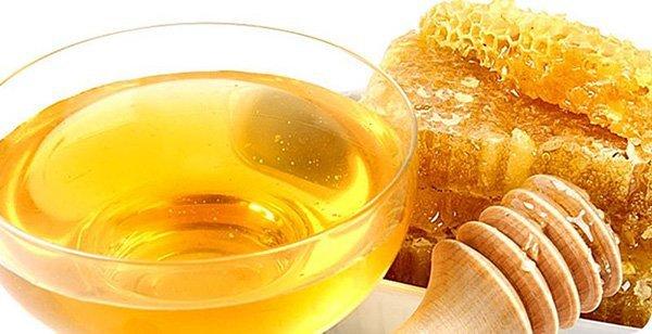 Мед при подагре - можно ли употреблять, польза и вред продукта