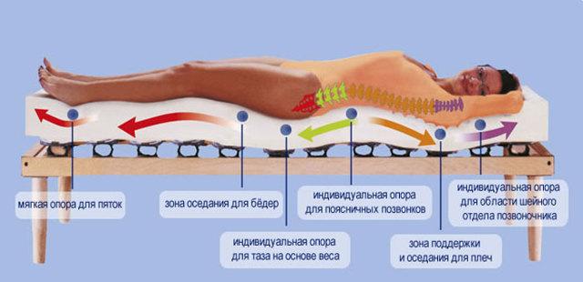 Ортопедические матрасы - как выбрать при остеохондрозе правильно